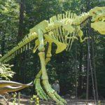Styrassic Park in Bad Gleichenberg: Größtes T-Rex Skelett der Welt