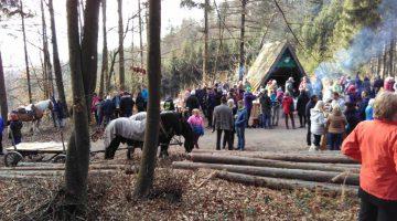 Pferde- und Hundesegnung im Stiftswald von Rein 26. Dezember 2018, ab 11:00 Uhr